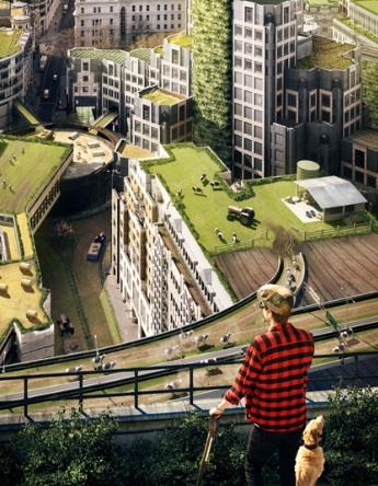 Urban farming5