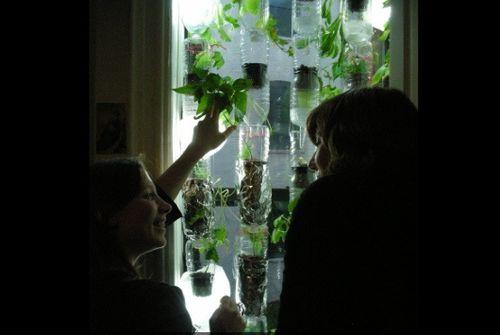 Windowfarm2