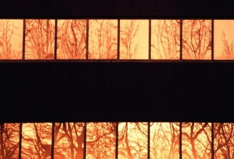 Orange building2