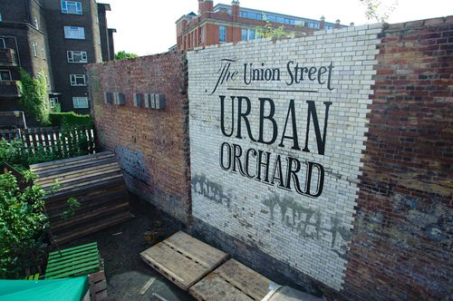 Urbanorchard