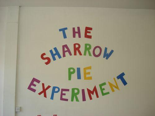 Sharrow pie experiment
